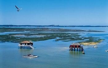 promenade bateau bassin arcachon